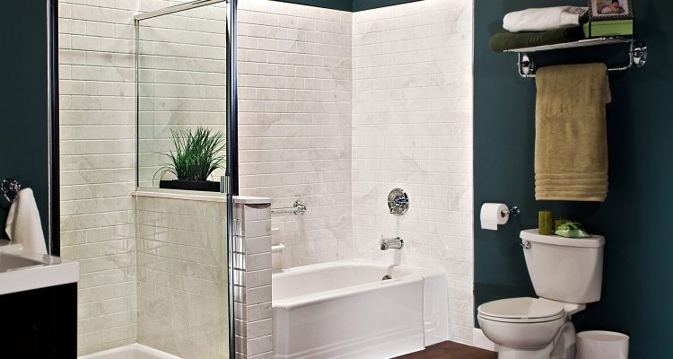 South Florida Bath & Shower Remodel - Bathroom Pros Inc (10)